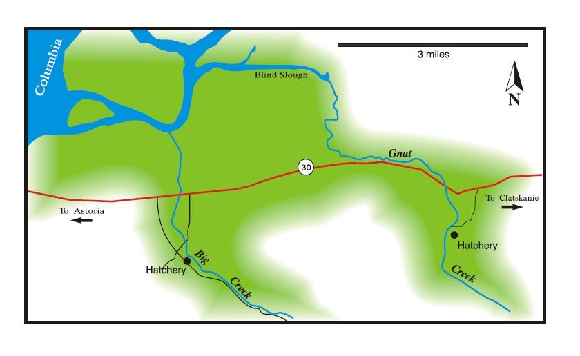 WA Steelhead Rivers Illustration By Coho Design